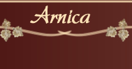 Appartement Arnica